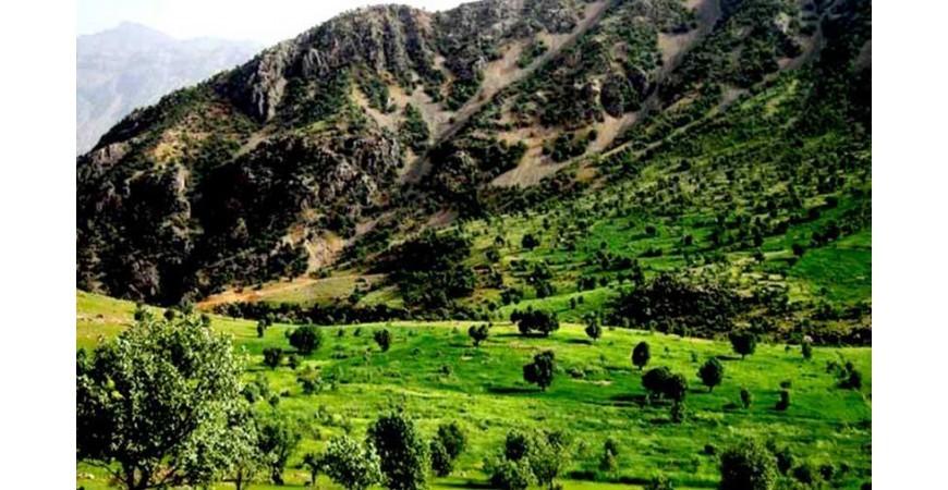دره عشق؛ بهشتی زیبا در دل طبیعت وحشی شهرکرد